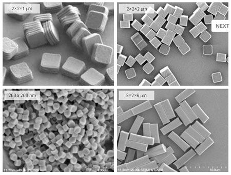 PRINT® Particles. Images obtained from Liquida Technologies web site