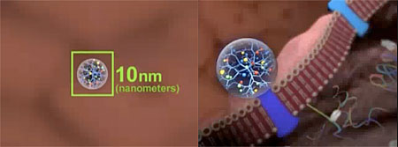 Video frames otained from the 'Video Journey Into Nanotechnology'