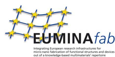Image obtained from EUMINAfab web site